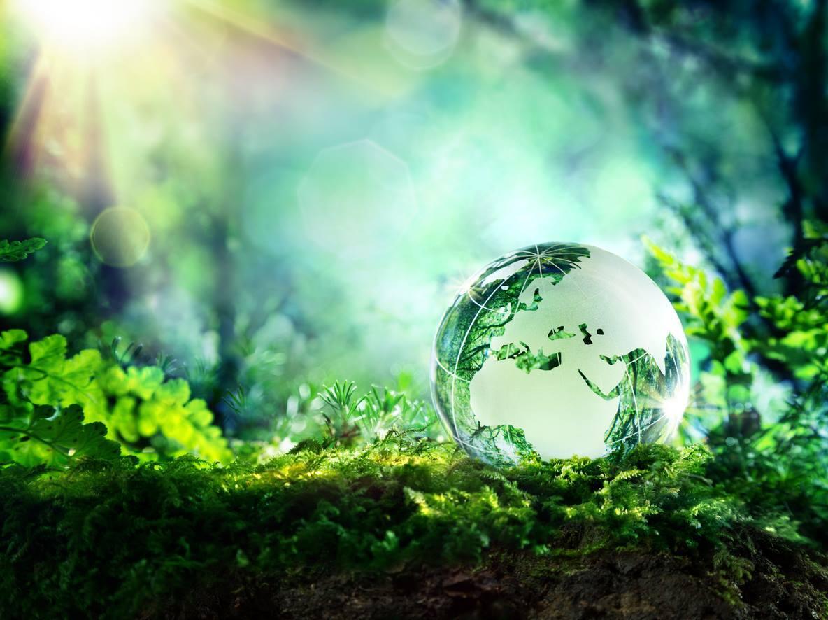 Международный день Земли призывает к грамотности в вопросах экологии и климата