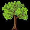 лиственные